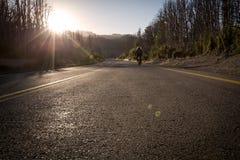 智利路 免版税库存照片