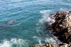 智利,南美的岩石海岸线 免版税库存图片