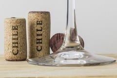 智利03的酒瓶黄柏 免版税库存图片