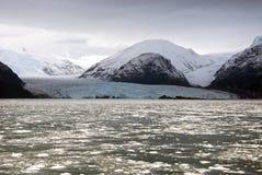 智利- Amalia冰川-伯纳多・奥希金斯国家公园 免版税库存照片