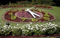 智利clock del flower 3月vi 免版税库存照片