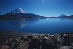 智利lauca国家公园 免版税图库摄影