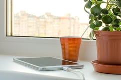智能手机和绿色花在一个花瓶在窗口 免版税库存照片