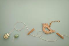 晾衣绳和鸟 库存照片
