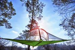 暂停在树在空气帐篷在竞选 库存图片