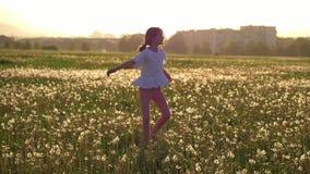 暑假有吸引力的女孩奔跑和跃迁在领域用获得乐趣和享有生活的蒲公英 休息cit地方  股票录像
