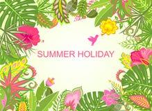 暑假热带背景 免版税库存图片