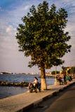 暑假镇海边 库存照片