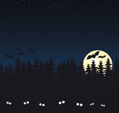 黑暗的森林满月 免版税库存图片