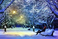 黑暗的冷淡的晚上公园冬天 库存图片