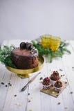 黑暗的巧克力蛋糕用曲奇饼和杯形蛋糕莓果在白色木背景 库存照片