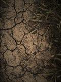 黑暗的干燥地球 免版税库存图片