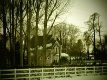 黑暗的森林房子 库存照片