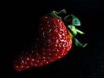 黑暗的草莓 免版税库存图片