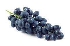 黑暗的葡萄,隔绝在白色背景,结果实 免版税库存照片