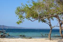 暗藏的天堂,委内瑞拉海滩 免版税库存照片