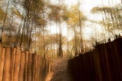 暗藏的村庄2 图库摄影