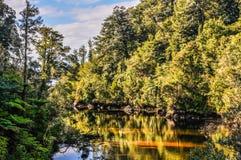 暗藏的池塘在亚伯塔斯曼国家公园,新西兰 库存照片