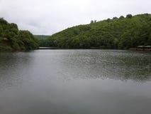 暗藏的池塘 图库摄影