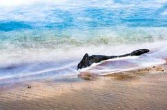 暗藏的海滩明白水 图库摄影