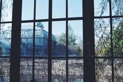 暗藏的温室 免版税库存图片