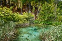 暗藏的瀑布在Plitvice国家公园 库存图片