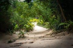 暗藏的玛雅人海滩4 免版税图库摄影