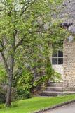 暗藏的门在有紫色开花的紫藤的石房子里 免版税库存图片