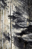 黑暗被风化的木板条 库存图片