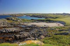 暗褐色Morbhaidh,科尔岛小岛  免版税库存图片