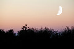 暮色月亮 免版税库存照片