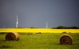 暴风云加拿大风力场 库存图片