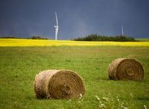 暴风云加拿大风力场 库存照片