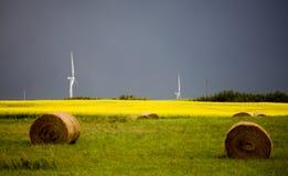 暴风云加拿大风力场 图库摄影