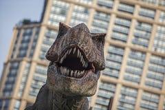 暴龙暴龙兽脚亚目食肉恐龙,动物,头,数字式,回报 免版税库存图片