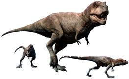暴龙有年轻3D例证的rex女性 库存例证
