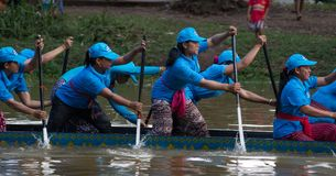 暹粒,柬埔寨- 2016年11月:妇女小船竟赛者队赛跑往结束在传统赛艇期间在Cambod 库存照片