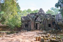 暹粒,柬埔寨- 2016年12月11日:Ta索马里兰在吴哥 著名喂 免版税库存照片