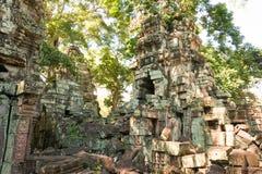 暹粒,柬埔寨- 2016年11月30日:Ta Prohm寺庙在吴哥 A 图库摄影