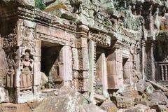 暹粒,柬埔寨- 2016年11月30日:Ta Prohm寺庙在吴哥 A 免版税图库摄影