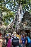 暹粒,柬埔寨- 2015年12月3日:游人在吴哥,暹粒的参观Ta Prohm寺庙 免版税库存图片