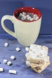 曲奇饼和可可粉 免版税库存照片