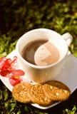 曲奇饼和热巧克力 免版税库存图片