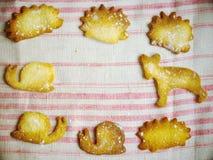 曲奇饼在动物形状中 库存照片