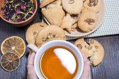 曲奇饼在茶碟和一杯茶在儿童` s手上延长 免版税图库摄影