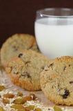 曲奇饼玻璃牛奶燕麦粥葡萄干 库存图片