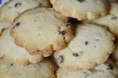 曲奇饼用香草和巧克力 免版税库存图片