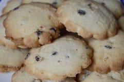 曲奇饼用香草和巧克力 库存照片