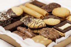 曲奇饼的分类 免版税库存照片