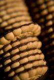 曲奇饼 库存图片